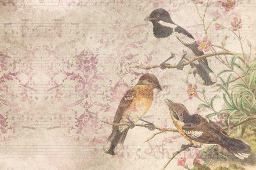 Fototapeta botaniczna z ptaszkami do jadalni