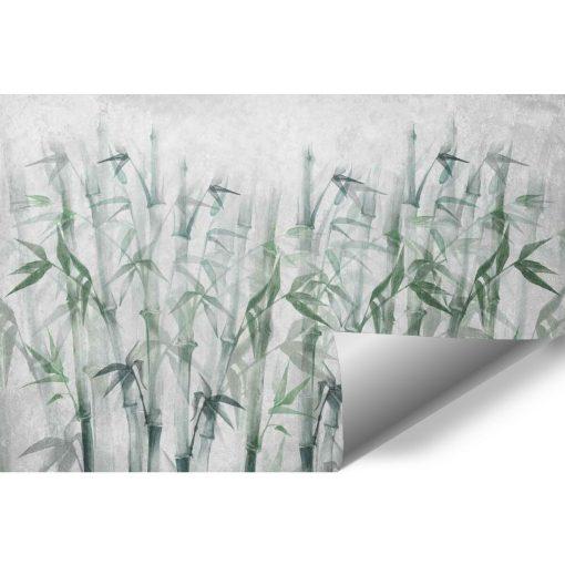 Nowoczesna fototapeta z bambusami na klatkę schodową