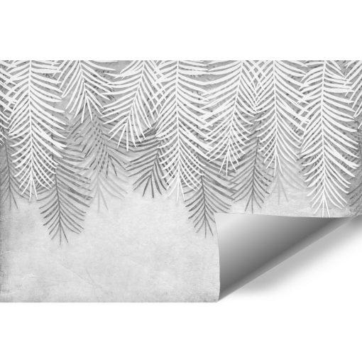 Palmowe liście na szarej fototapecie do gabinetu