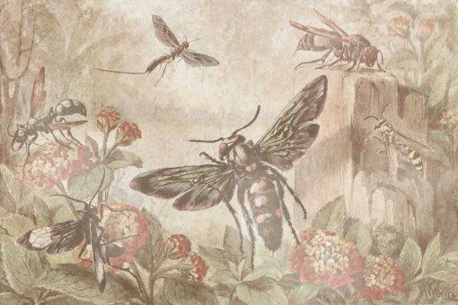 Tapeta z reprodukcją - Owady i kwiaty do jadalni