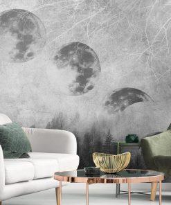 Fototapeta fazy księżyca nad lasem w szarościach