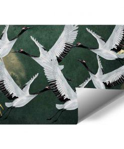 Tapeta z dzikimi ptakami