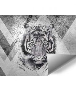 Tapeta z tygrysem dla młodzieży